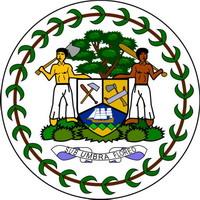 изображения мед эмблем